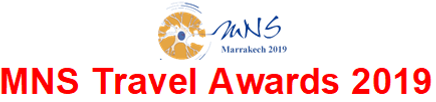 MNS TRAVEL AWARDS.png