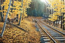 Fall Deer Tracks