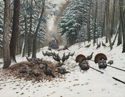 Winter Turkey Tracks