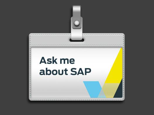 Designs for SAP Team