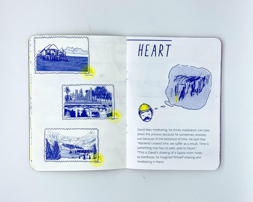 David's Story - Heart