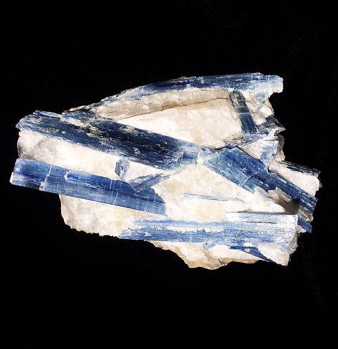 Kyanite with Quartzite 1