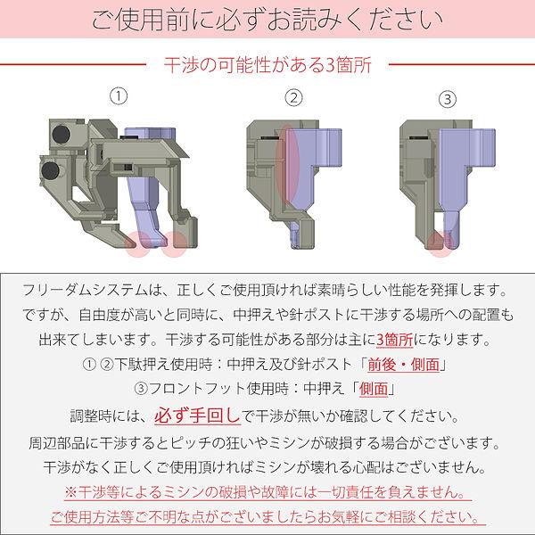 フリーダム画像7.jpg
