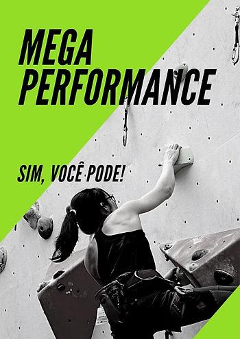 MEGA PERFORMANCE 2.jpg