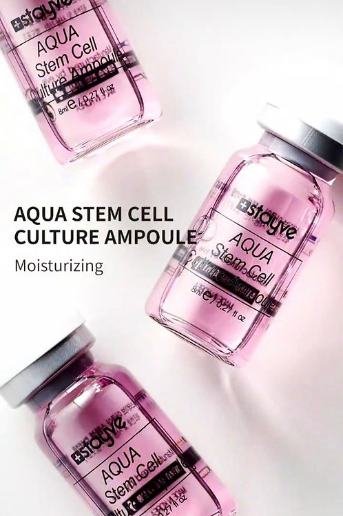 Aqua stem cell culture Stayve