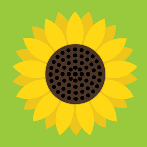 Sunflower Oil perks and benefits for your skin