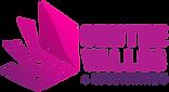 Logo_Centre_Valles1-300x164.png