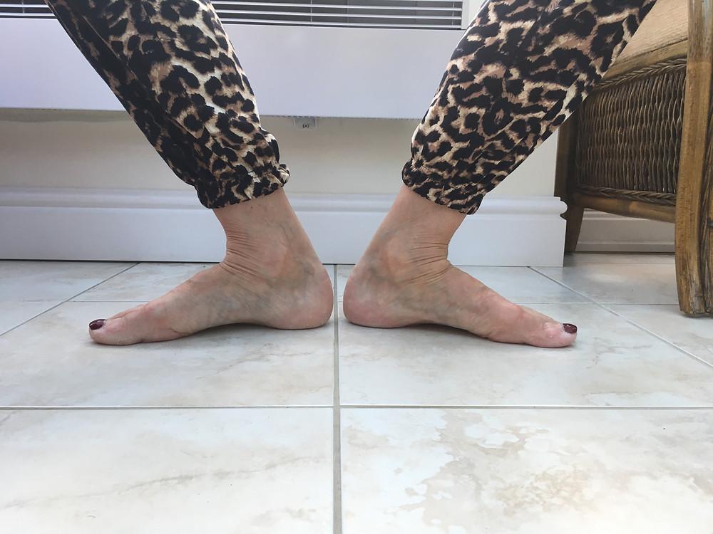 Large Ankle Dorsiflexion (Demi Plié)