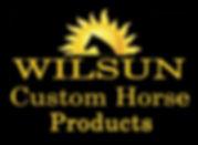 wilsun-logo.jpg