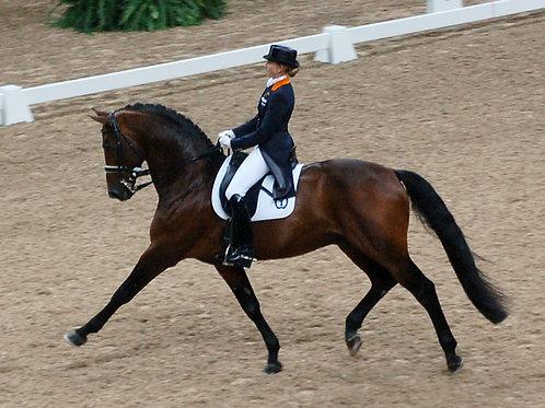 Kudzu Klinic Rider