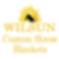 wilsun-logo.png