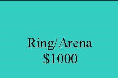 Arena Sponsorship
