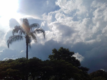 Previsão do tempo para São Gabriel do Oeste