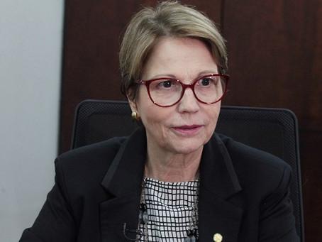 Tereza Cristina e Murilo Zauith são nomes para governar Mato Grosso do Sul