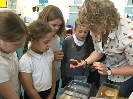 Plastics Awareness in Schools