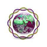 Logo lumière d'avenir 2.png
