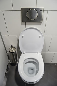 Toilets & Sinks Installation or repairs