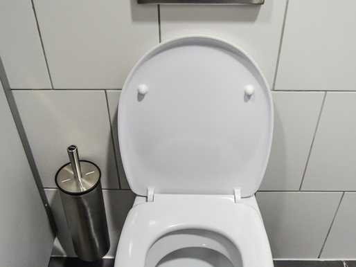 What is the engineering behind toilets?
