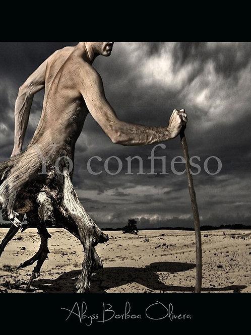 YO CONFIESO (poemario)