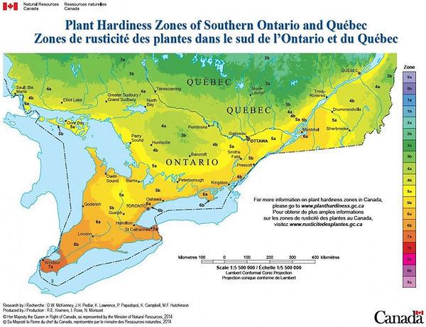 Ontario Plant Hardiness Zones