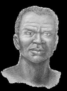 Zumbi dos Palmares faleceu em 1695. Foi um dos principais líderes negros do Brasil que lutou bravamente pela libertação do seu povo. (Imagem: Arquivo DMC GOISP)