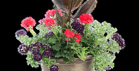 Premium Patio Planter