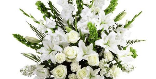 All White side Sympathy Tribute