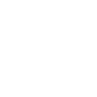 white crew logo-01.png