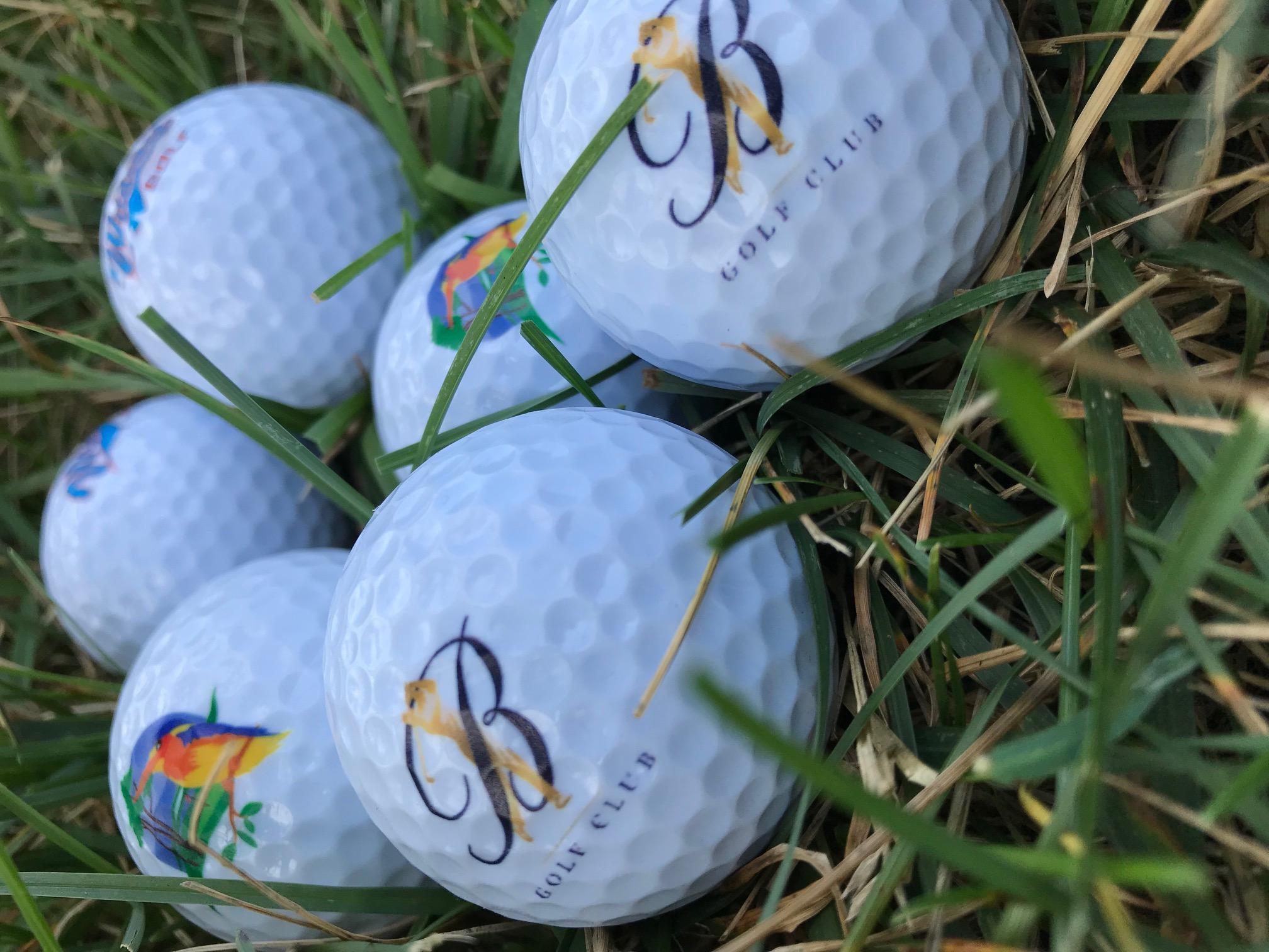 DCS golfgrass