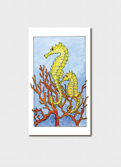 Threatened: Seahorse & Endangered: Fire Coral in Great Barrier Reef