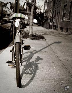Shadow-cycle