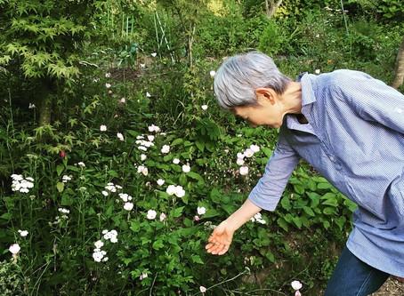 自然の庭 大利さん