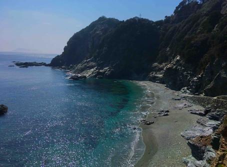 佐田岬半島の印象