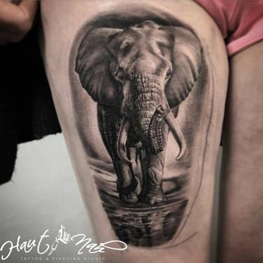 elefanten-tattoo.jpg