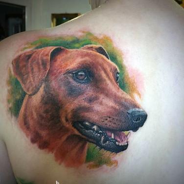 tier-portrait-tattoowierung.jpg