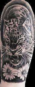 tiger tattoo | hautnah ebersbach