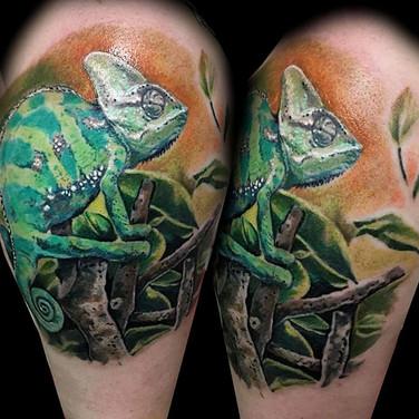 chamaelion-tattoo.jpg