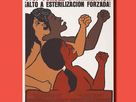 Stop Forced Sterilization / ¡Alto A Esterilizacion Forzada! — Poster of the Week
