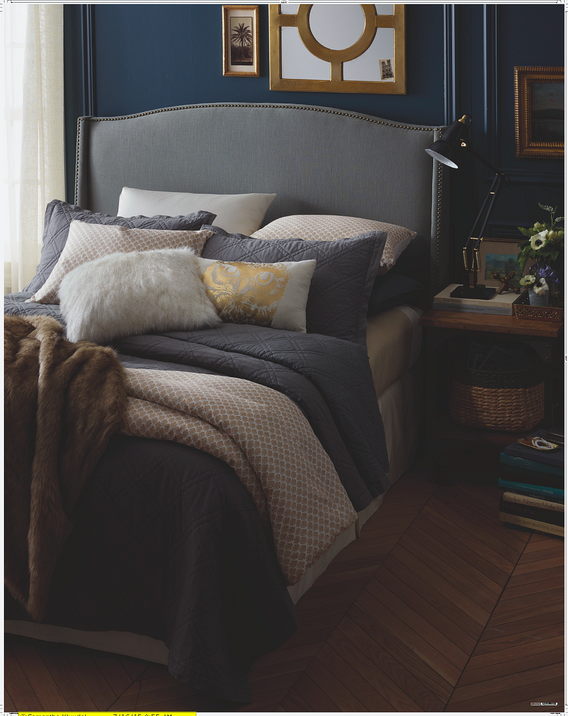 Thres Bedding_Focal.png