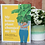 Thumbnail: My House Plant Changed My Life