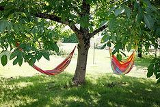 hamac du gite macarons pour 4/6 pers avec piscine votre maison de vacance a Echallat en Charente  (16 )
