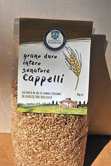 Grano duro Cappelli - grano intero (1 kg)