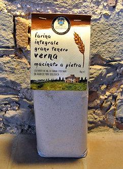Grano tenero Verna - farina integrale (1 kg)