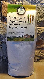 Farina Tipo 2 - Popolazione evo di grani teneri (1 kg)