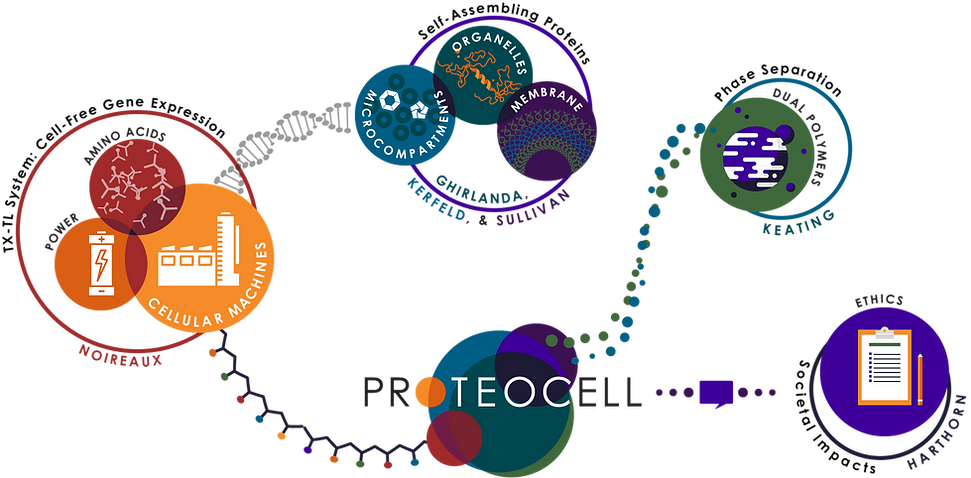 ProteoCell_Project_Overview.png