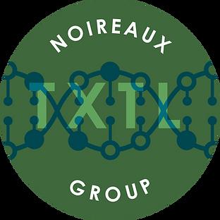 Noireaux Lab Logo_.png