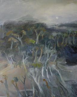 TREE GHOSTS