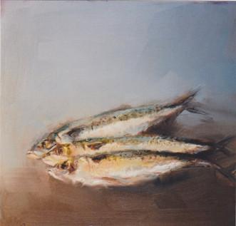 Fish Life