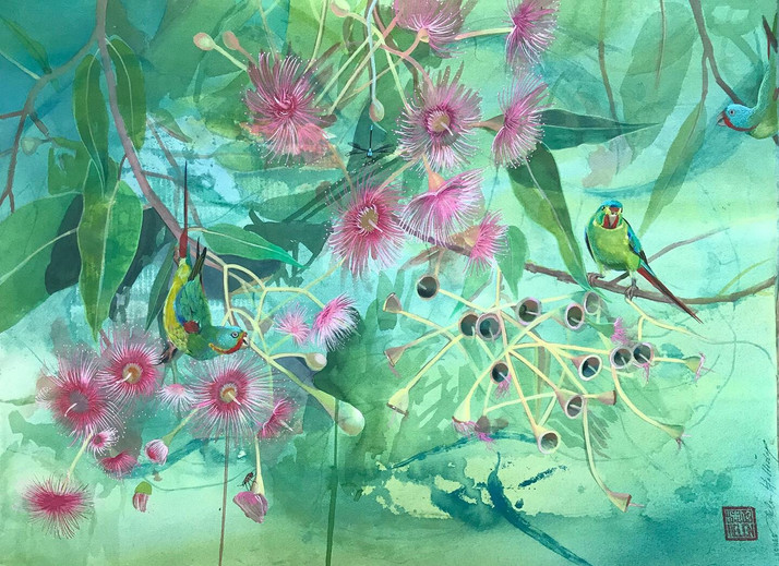 SWIFT PARROT AND FLOWERING GUM