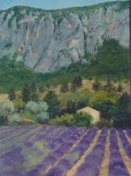 Lavender field Gorge de GreauxMG_6917.j
